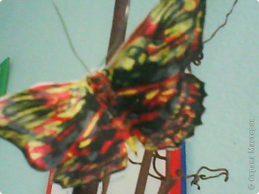Я брала шёлковую ткань, желатинила её, посте того как высохла вырезала бабочек по шаблону,разукрасила,при помощи булек для изготовления цветов сделала прожилки и изгиб небольшой крылышек, из проволочки сделала усики. фото 3