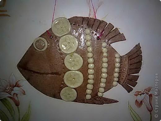 Первые рыбки фото 1
