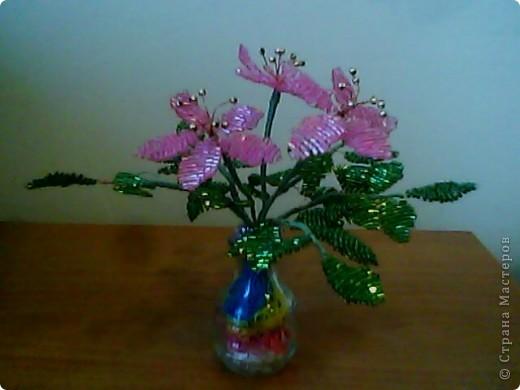цветочки в вазе фото 2