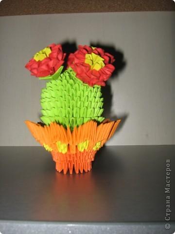 Такой вот кактус фото 3