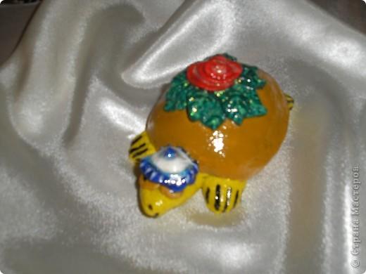 Черепаха талисман фото 2