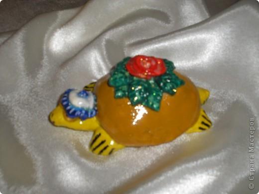 Черепаха талисман фото 1