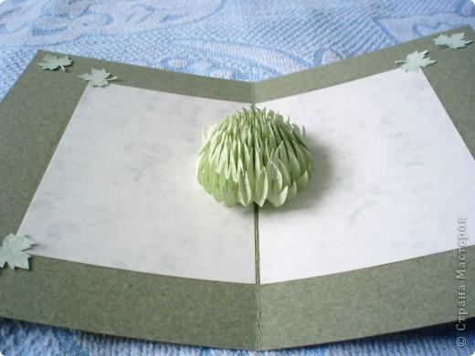 открытки фото 2