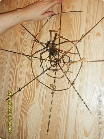 Спасибо Мастерам сайта за идеи и мастер-классы. Завтра у директора день рождения, а он как раз обмолвился о такой вот примете: если в доме завелся паук (особенно наверху над кроватью) - это к деньгам. Пусть же у него и на работе всегда живет паук. фото 1