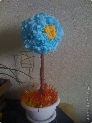 мои деревца фото 1