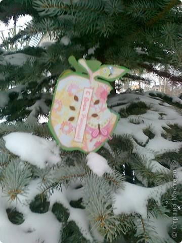 """Зимнее яблоко"" фото 1"