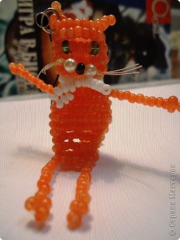 Котята! фото 2