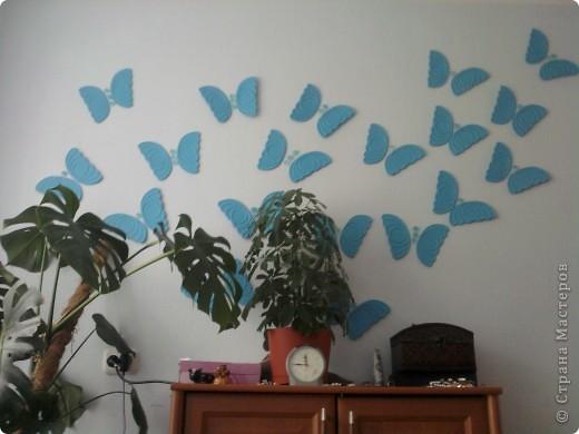 Вот такие бабочки у меня в спальне на стене фото 1