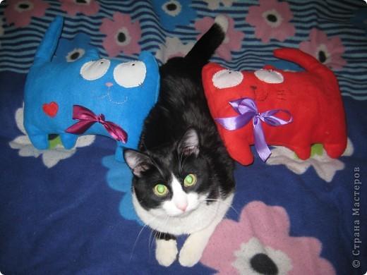 Вот таких котиков я решила сшить в качестве подарков к грядущим праздникам. фото 4