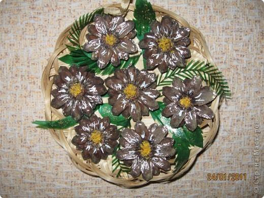 Когда срежешь верхушки шишек, получаются красивые цветы фото 4