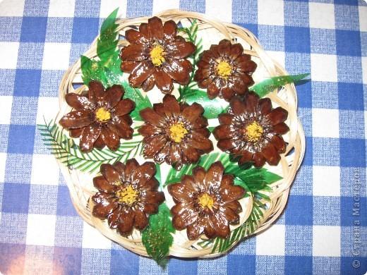 Когда срежешь верхушки шишек, получаются красивые цветы фото 2
