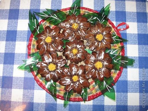 Когда срежешь верхушки шишек, получаются красивые цветы фото 3