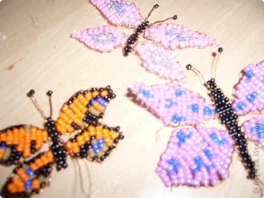 Мои первые бабочки из бисера.