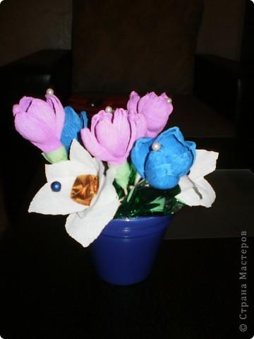 Не издържах - опитах да направя и минзухари :§ фото 1