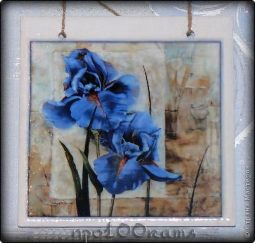 Увидела эти работы http://stranamasterov.ru/node/139529?c=favorite и загорелась!Мама моя просто обожает ирисы,и я решила сделать ей подарочек,только обязательно с голубыми цветами. фото 1