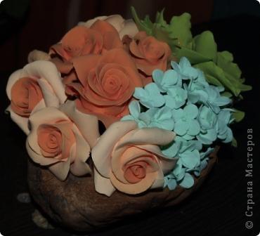 Орхидеи в кокосовой вазочке фото 3