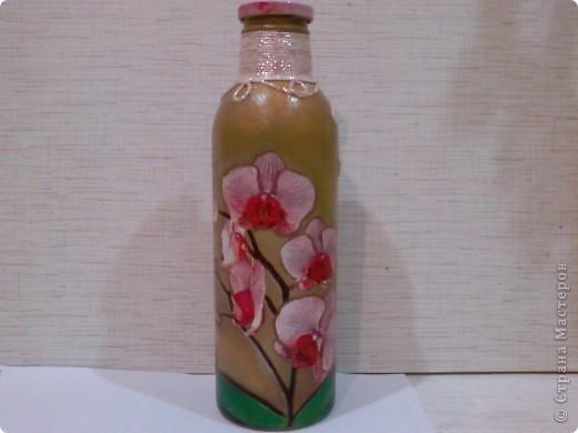 Архидеи фото 1