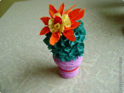 Друзья- кактусы. =) фото 3