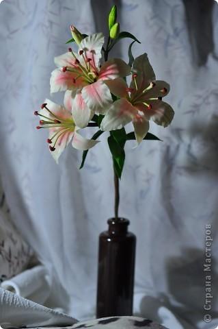 Ещё одна лилия. фото 1