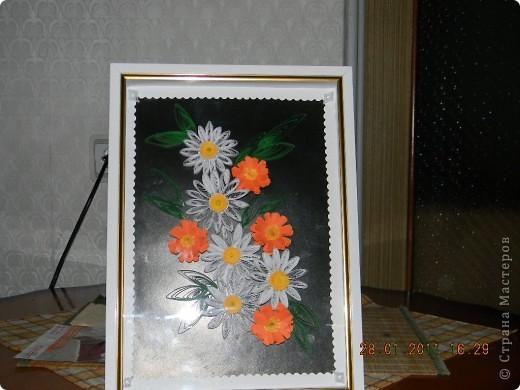 Ромашки с календулой фото 1