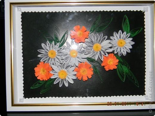 Ромашки с календулой фото 2