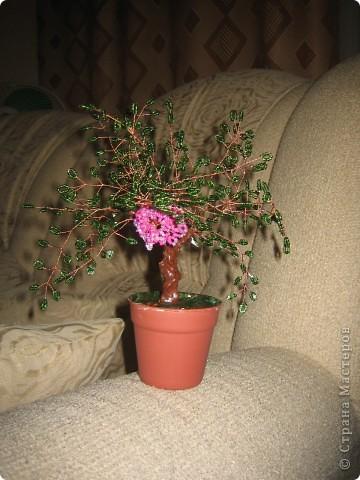 Это мое второе деревце фото 3