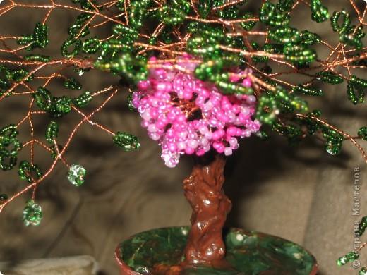 Это мое второе деревце фото 2