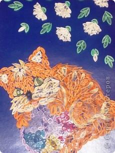 Котик на шаре