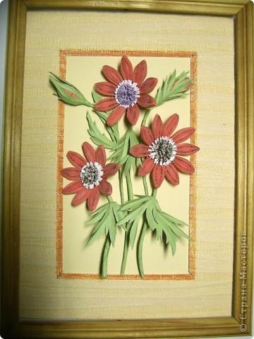 Не знаю как называются эти цветочки, но увидела и влюбилась. фото 3