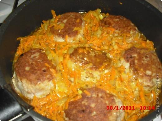 Вам понадобится-куриный фарш(500гр.),яйца 2 шт.,лук 3 шт..приправа для курицы,растительное масло,морковь,панировочные сухари,долька честнока,замороженая зелень(можно любую другую),сыр 50-100 гр.,перец,соль. фото 8
