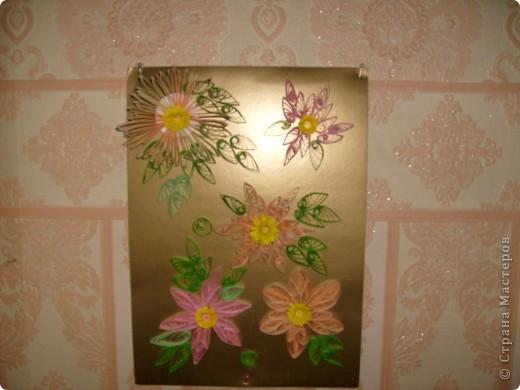 Мои цветочки, я ещё учусь. фото 2