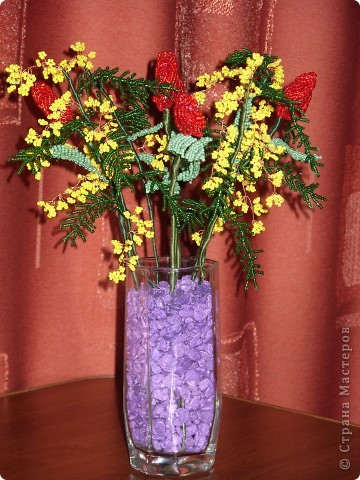 Тюльпаны и момоза