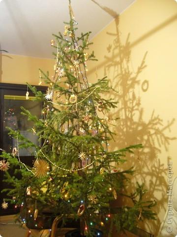 В этом году свою лесную красавицу нарядила исключительно новогодними игрушками из соломки. фото 1