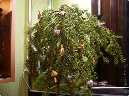 В этом году свою лесную красавицу нарядила исключительно новогодними игрушками из соломки. фото 11