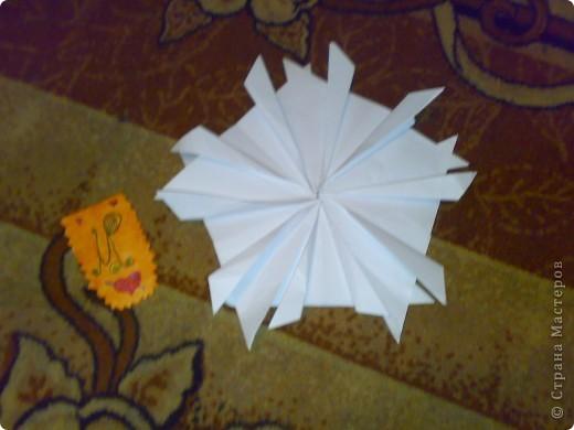 Моя звезда и моя звёздная карточка фото 1