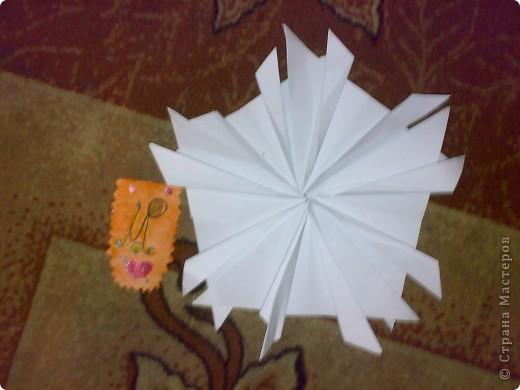 Моя звезда и моя звёздная карточка фото 2