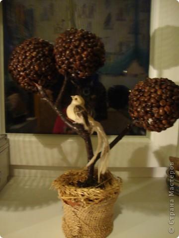 как-то так. двойное дерево фото 2