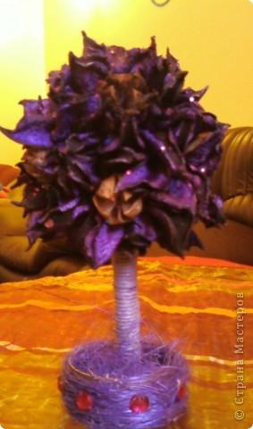Ароматизированные деревья (МК)   фото 1