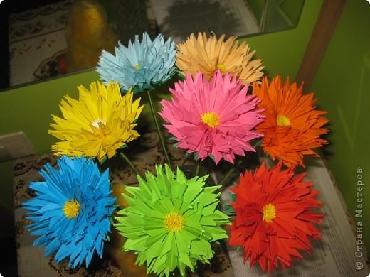 Цветы! фото 1