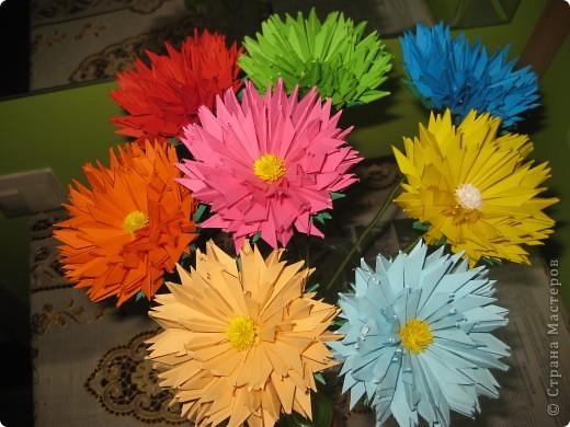 Цветы! фото 2