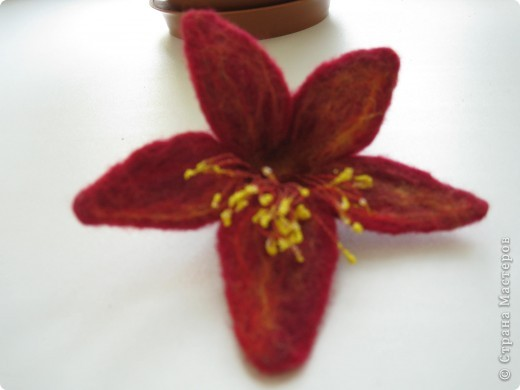 Лилия 5ти лепестковая валяшка фото 1
