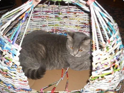 Задумывалось сделать домик для кота)))но т.к я еще плету недавно опыта нет...получилось,что-то похожее на юрту)) фото 2
