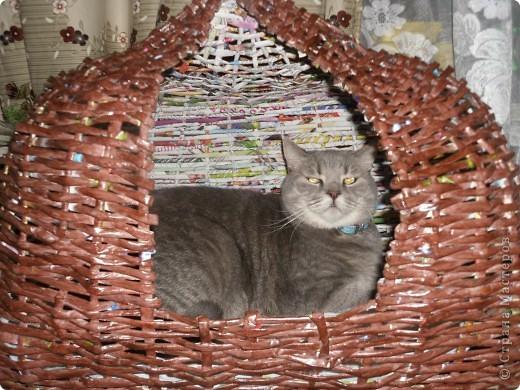 Задумывалось сделать домик для кота)))но т.к я еще плету недавно опыта нет...получилось,что-то похожее на юрту)) фото 3