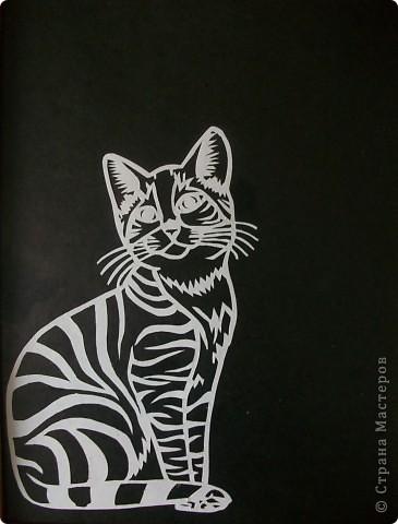 Кошка и котенок. фото 4