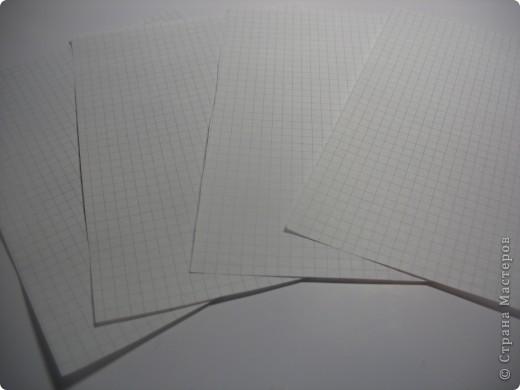 возьмите тетрадные листы в клетку, я взяла 4 фото 1