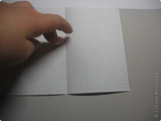 возьмите тетрадные листы в клетку, я взяла 4 фото 5