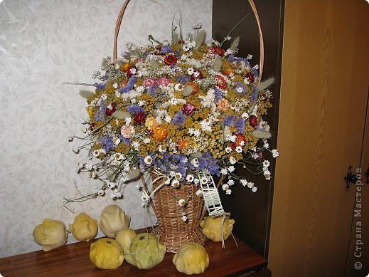 Сухоцветы.Букет. фото 2