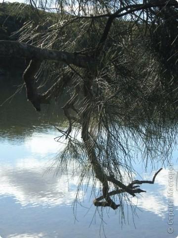 Красочная, теплая Австралия №2. Продолжение !!!! фото 17