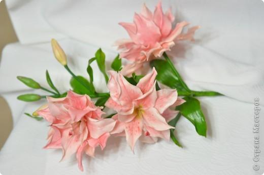 Сделала вторую лилию из того же самодельного фарфора. Планирую букет из трёх разных сортов лилий ( эта махровая лилия). фото 2