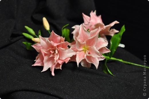 Сделала вторую лилию из того же самодельного фарфора. Планирую букет из трёх разных сортов лилий ( эта махровая лилия). фото 3